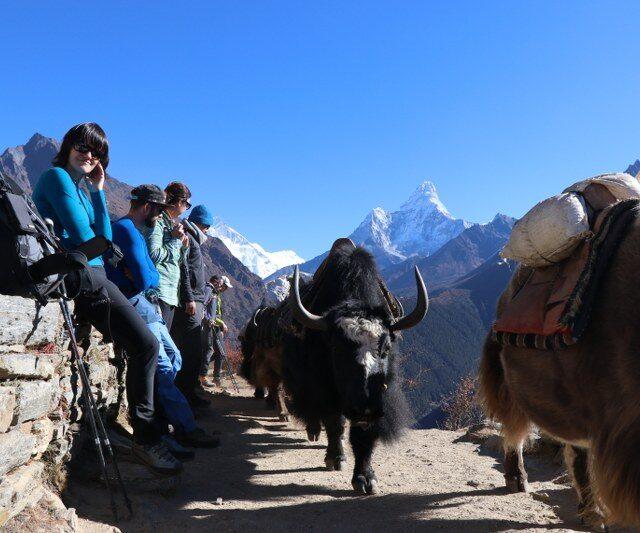 https://nepalhimalayantrails.com/wp-content/uploads/2021/03/IMG_0606_800x533-640x533.jpg